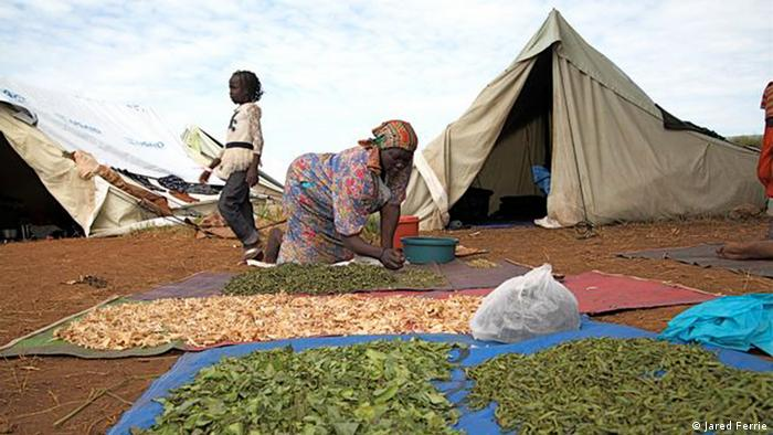 Rosa Adoni dries edible leaves in a temporary camp for returnees on the outskirts of Juba