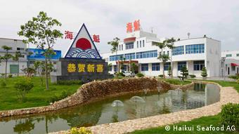 Haikui's headquarters on the island of Dongshan