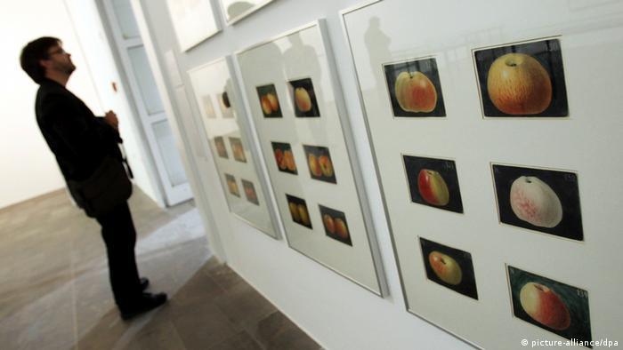 Ein Mann schaut sich Bilder von Früchten an.