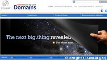 ICANN (Screenshot)