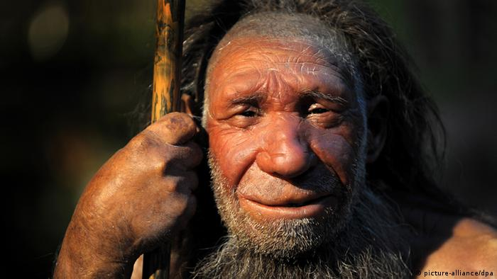 Neanderthal figure in a museum. (Photo: dpa)