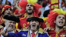 Фанаты на матче Евро-2012<br />