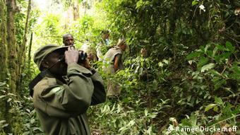 Tourists with binoculars in the Bwindi Impenetrable National Park (photo: Rainer Dückerhoff)