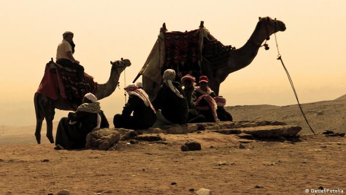 Symbolbild Wüste Kamel