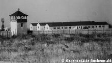 Blick auf Steinblocks im Nordteil des Speziallagers. Copyright: Gedenkstätte Buchenwald
