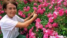 Rosen im Palmengarten