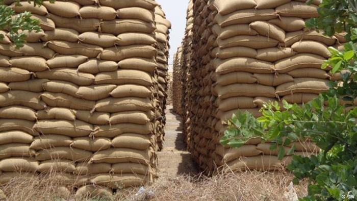 Tonnen von Getreide lagern unter freiem Himmel und sind ungeschützt dem Wetter ausgesetzt / halbtotal.  Copyright: DW/Sandra Petersmann