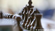 Eines von 550 Schachbrettern steht am Montag (10.11.2008) kurz vor der 38. Schacholympiade im Dresdner Kongresszentrum. Helfer haben für den vom 12.-25. November 2008 stattfindenden Wettbewerb 17.600 Schachfiguren auf die Bretter gestellt. 2160 Aktive aus 152 Nationen werden an der Schacholympiade 2008 teilnehmen. Foto: Ralf Hirschberger dpa/lsn (zu dpa 0239 vom 10.11.2008) +++(c) dpa - Report+++