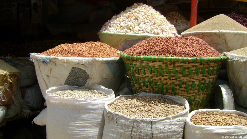 Le Sénégal en route vers l′autosuffisance alimentaire | Afrique | DW