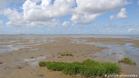 Wadden Sea (photo: picture alliance/dpa)