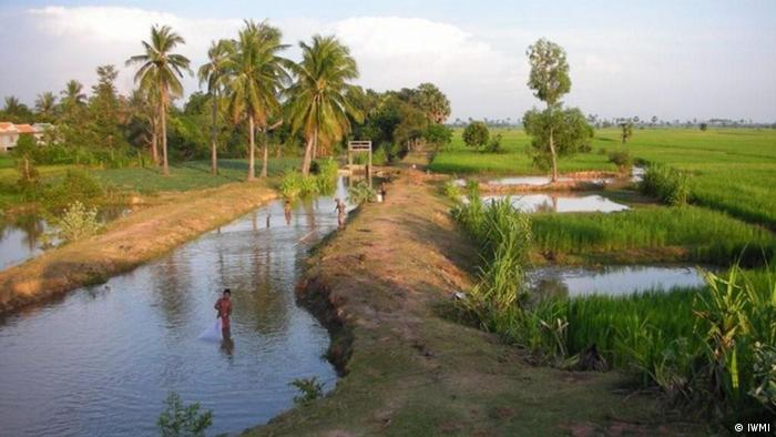 An irrigation canal in Cambodia Photo:IWMI