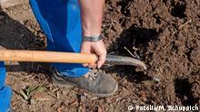 Gartenarbeit Schaufel Erde