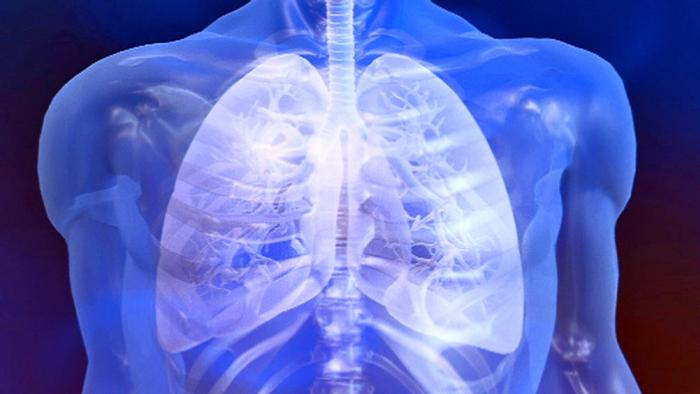 25.07.2012 DW fit und gesund Lunge