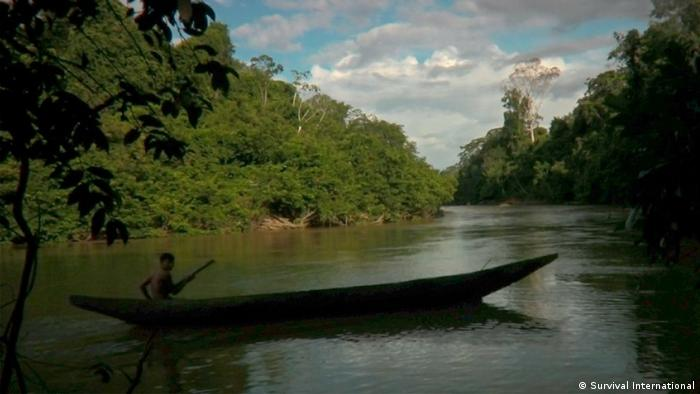 A canoe on a lake in the Ecuadorian rainforest