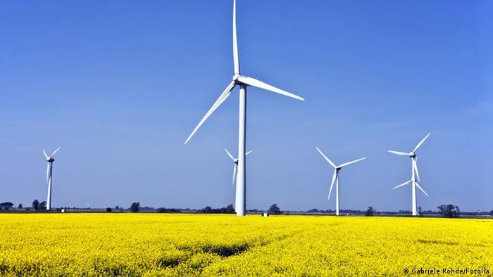 Symbolbild Nachhaltigkeit Natur