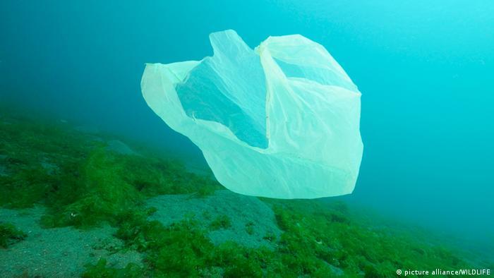Las bolsas de plástico ponen en peligro el ecosistema marino.