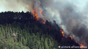 Wald brennt auf einem Hügel in Spanien. Die Hälfte ist abgebrannt.