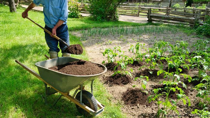 Tauschringe Gartenarbeit