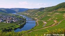 Trittenheim an der Mosel © pics #29822325