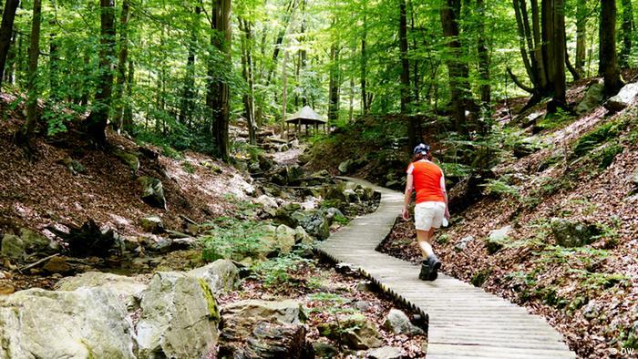 Wanderin in den Wäldern um Spa/Belgien. (Foto: DW)