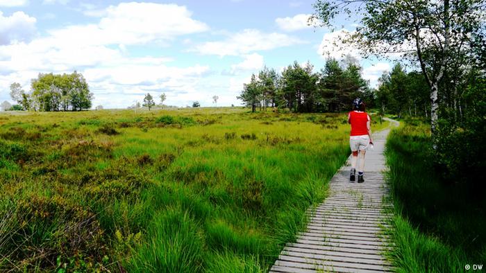 Wanderin im Moor bei Spa/Belgien. (Foto: DW)