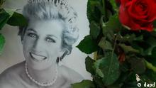 Lady Diana - Galerie