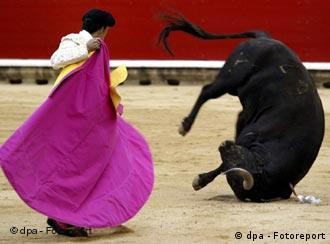The blood and soul of Spain?