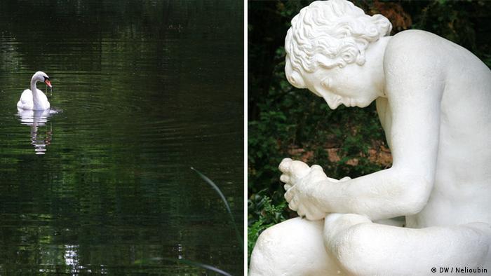 Лебедь и скульптура в парке