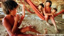 Brasilien Venezuela Yanomami Indianer