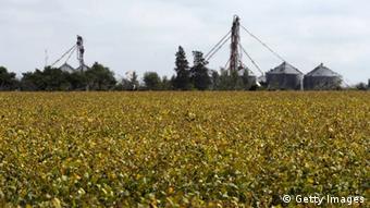 Sojaplantage (Foto: Getty Images).