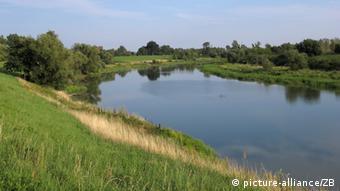 Deichlandschaft an der Elbe (Foto: picture alliance).