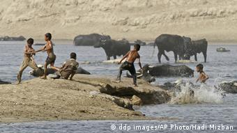 Children play with cattle in the river, in the Tigris river in Baghdad, Iraq, Wednesday, July 14, 2010. The animals are bathed daily to help keep them free of diseases and to protect them from the heat. (ddp images/AP Photo/Hadi Mizban)