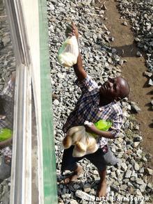 Um comboio por semana em cada direção não chega para alimentar as populações locais, daí que também crianças tenham de recorrer ao trabalho