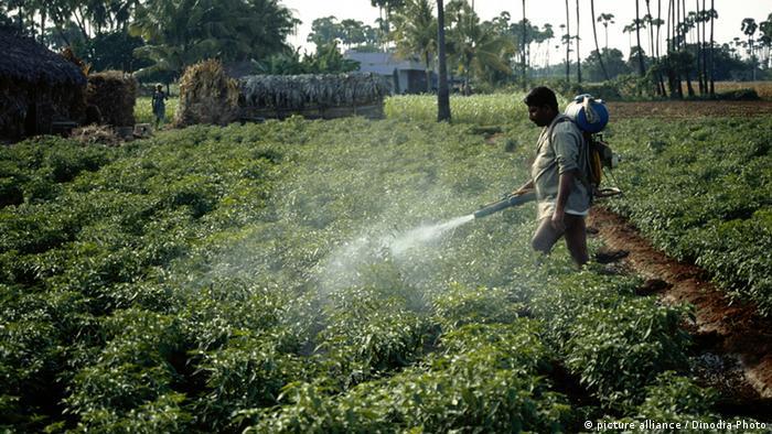 Pesticide over a crop