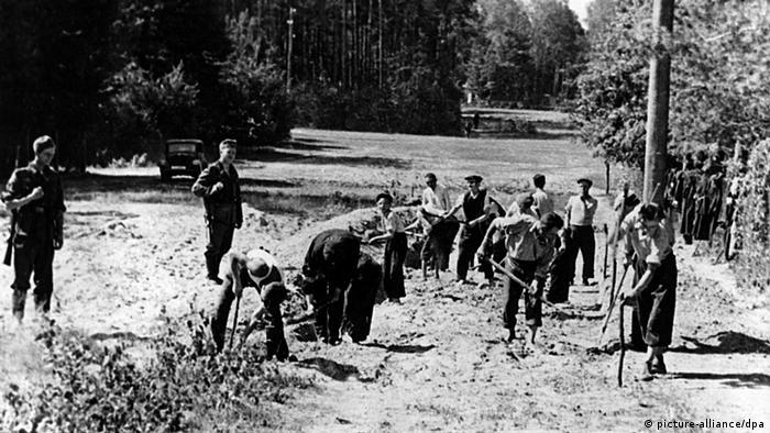 Dwie trzecie robotników przymusowych było zmuszanych do pracy w rolnictwie, pozostali m.in. w fabrykach czy przy budowie dróg