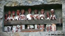 """Dateiname: Toraja (1) Aufnahmeort: Lemo, Indonesien Aufnahmedatum: 06.01.2009 Fotograf: Gero Simone Beschreibung: Diese hözernen Grabfiguren werden """"Tau Tau"""" genannt und bewachen die Toten in ihren Felsengräbern dahinter. In Lemo gibt es eine einzigartige hohe Felswand, wo es noch mehr Balkone mit Grabfiguren darauf gibt. In diesem Gebiet wohnt die indonesische Ethnie der Toraja."""