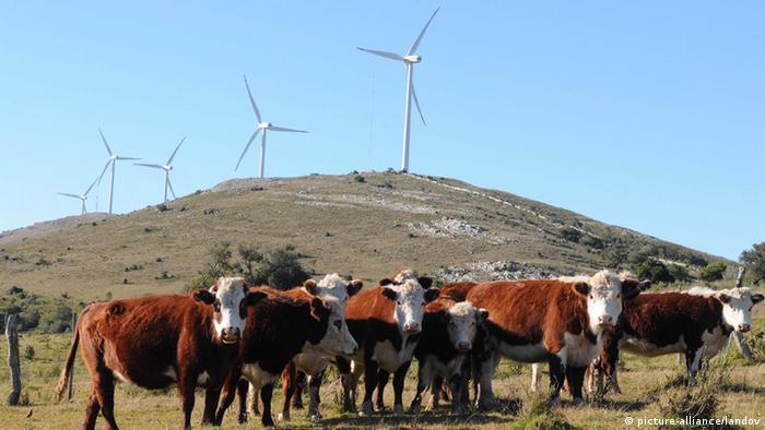 Energía eólica en Uruguay.