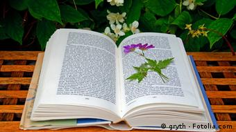an open book lying on a table with a dried flower kept on it #24178728, Copyright: gryth - Fotolia.com