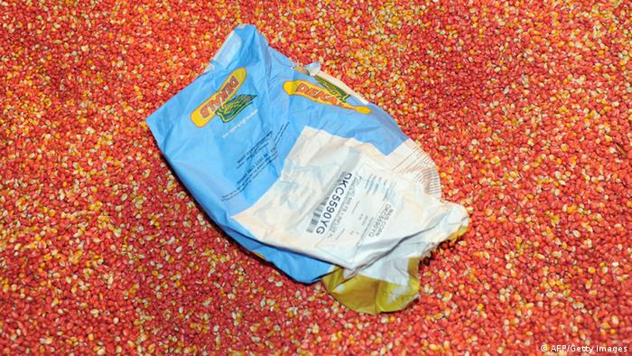 A bag containing 'MON 810', a variety of genetically modified corn ERIC CABANIS/AFP/Getty Images)