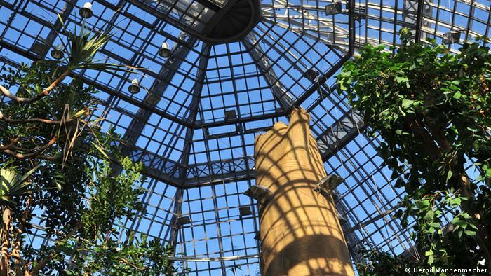 Оранжерея из стекла и стали в Берлинском ботаническом саду