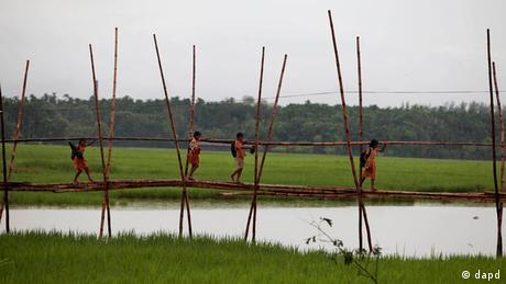 Symbolbild Hydrokultur Gemüseanbau Bangladesch