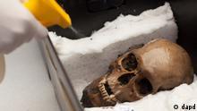 Mexiko Archäologie 50 Schädel in Aztekischem Tempel Templo Mayor gefunden