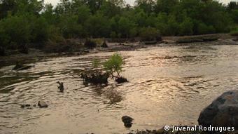 Devido à extração de areia, a praia Diogo Nunes transformou-se num lago de lama e pedra.
