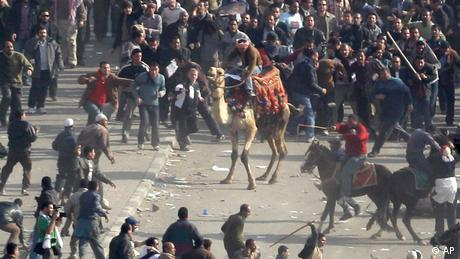 Ägypten Kairo Proteste Demonstrationen Kamel