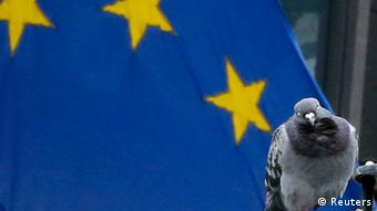 A pigeon perching near a European Union flag in Brussels September 13, 2012