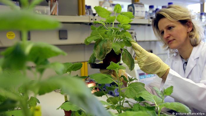 Генная лаборатория концерна Bayer - одного из участников T5 Job-Messe