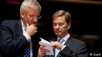 Guido Westerwelle und der schwedische Außenminister Carl Bildt (Foto:Virginia Mayo/AP/dapd)