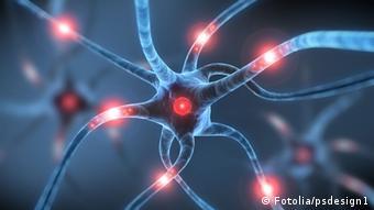 Živčane stanice