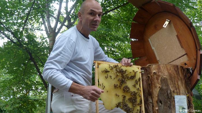 Heinz Risse, organic beekeeper at the Prinzessinnengarten (Berlin), taken 15. Sep. 2012at the Prinzessinnengarten; Copyright: DW/C. Lomas