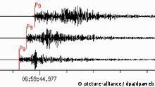 Die Ausschläge auf dem Seismographen der Stationen 1. Riedel, 2. Bad Segeberg und 3. Ippenbühren des Deutsches Nationales Datenzentrum (NDC) der Bundesanstalt für Geowissenschaften und Rohstoffe (BGR). Ein Erdbeben der Stärke 4,5 auf der Richterskala hat am Mittwoch (20.10.20049 überraschend Teile Norddeutschlands erschüttert. Der Erdstoß erschreckte nach Behördenangaben viele Menschen, richtete aber keine Schäden an. Bei Polizei und Feuerwehr ging jedoch ein Flut von Anrufen besorgter Bürger ein. Vielerorts flohen Menschen auf die Straße. Die Ursache des Bebens war zunächst unklar. Das Epizentrum lag in Niedersachsen bei Neuenkirchen (Landkreis Soltau-Fallingbostel) Foto: BGR dpa